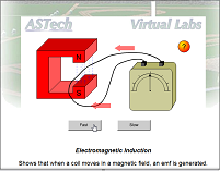Electromagnetic Induction Lab